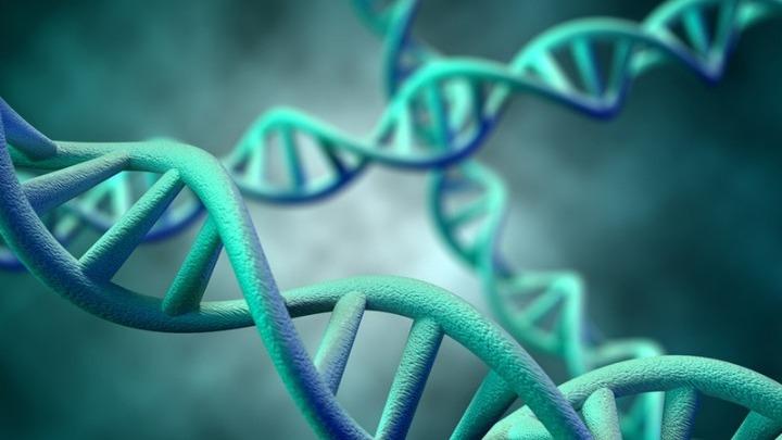 Από τους Νεάντερταλ προέρχεται το DNA που αυξάνει τον κίνδυνο για λοίμωξη από Covid-19